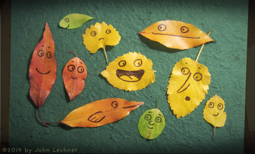 Leaf Drawings by John Lechner