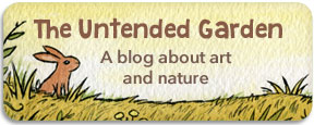 The Untended Garden - a blog about art and nature
