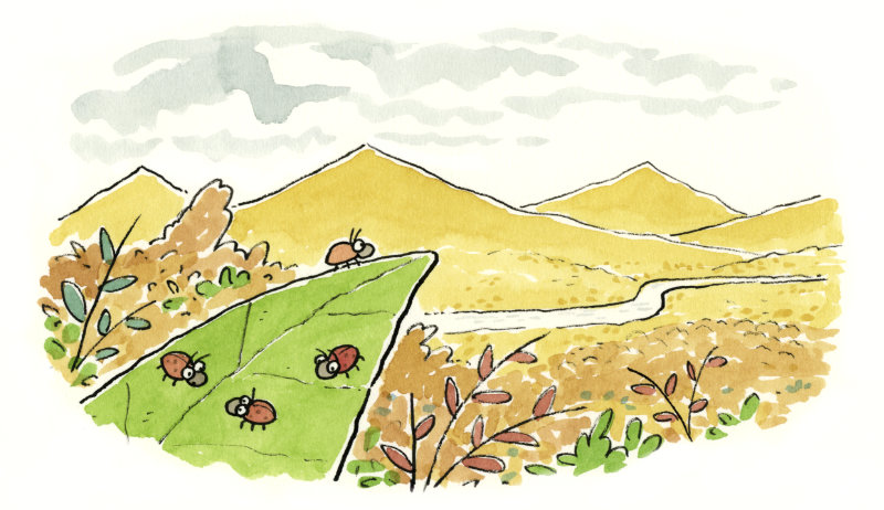 A ladybug sits at the edge of a leaf, looking out over a landscape and mountains.
